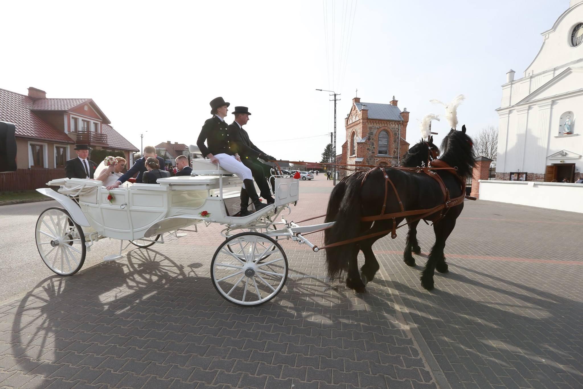 Agnieszka i Robert już po ślubie! Zobacz zdjęcia Rolnik Szuka Żony